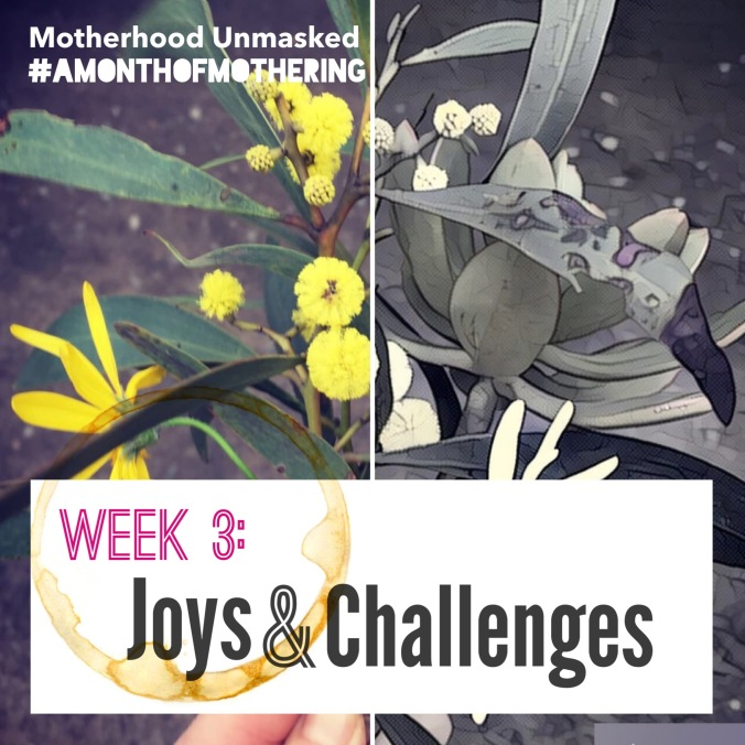 joys and challenges